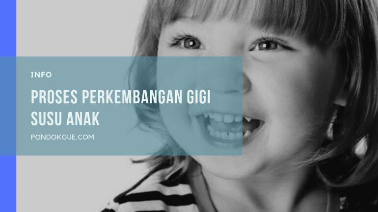 Proses Perkembangan Gigi Susu Anak
